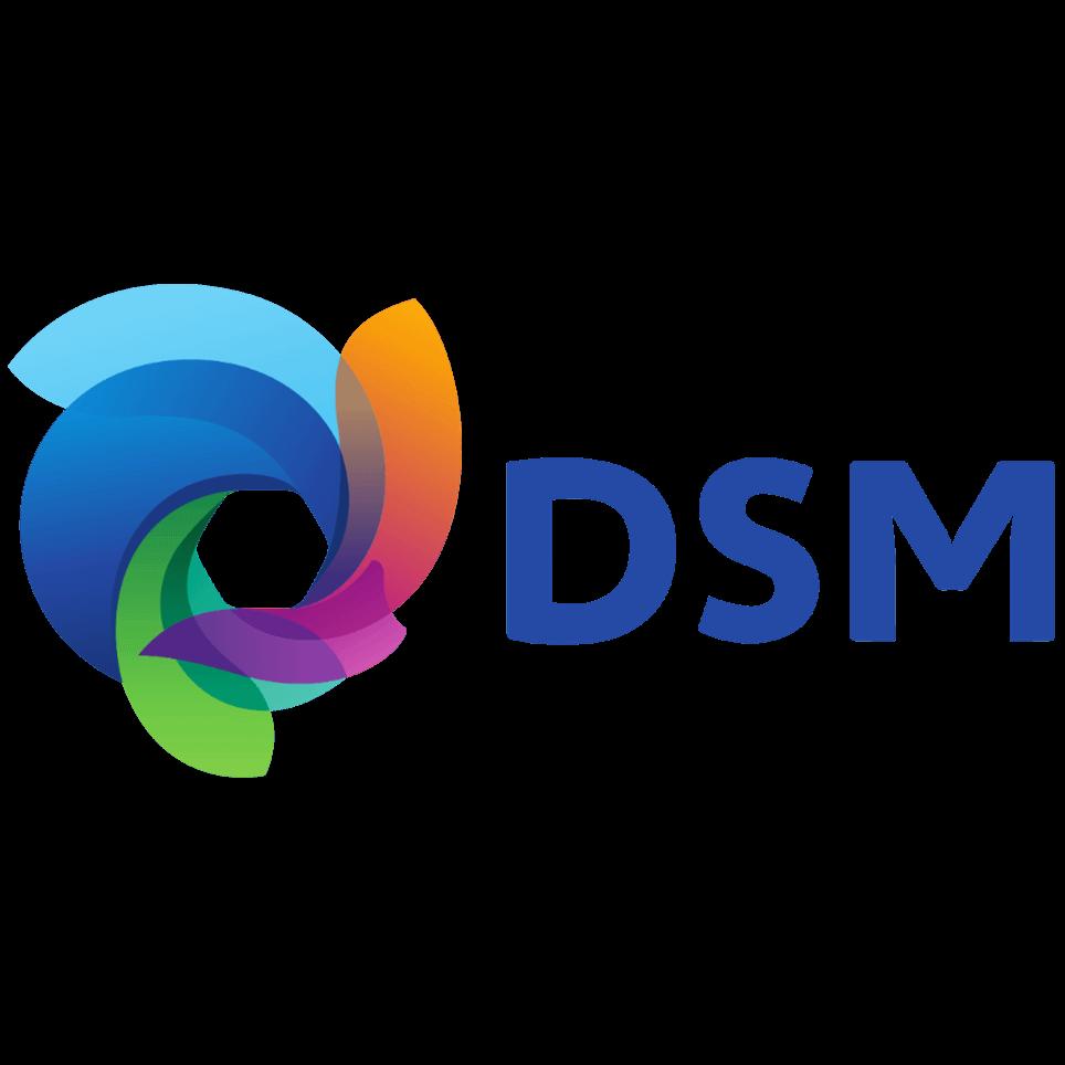 DSM company logo